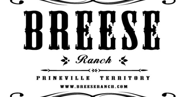 bee logo design project  i like the cowboy feel to this style