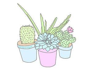 Plants Overlays Tumblr Tumblr Drawings Tumblr Transparents