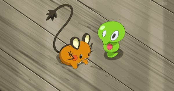 Who Is Squishy In Pokemon Xyz : Pokemon Xyz Squishy Images Pokemon Images