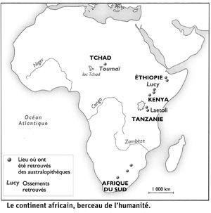 La Prehistoire Sur Les Pas Des Premiers Hommes Prehistoire