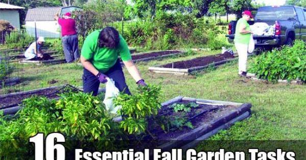 16 essential fall garden tasks shtf emergency preparedness and homesteads - Fall gardening tasks ...