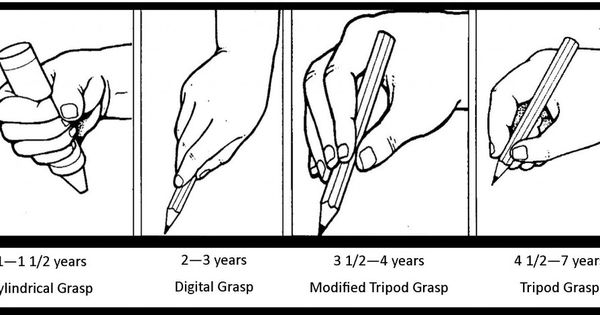 stages of pencil grasp. This article is fascinating and alleviates some of