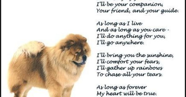 New Chow Chow Print Forever Art Poem Ebay With Images