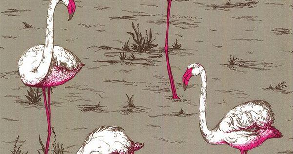 Flamingo Wallpaper, Flamingo And John Lewis