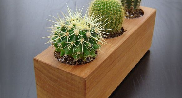 Wood Succulent Planter in Recycled Cedar | Balcony Gardening | Scoop.it