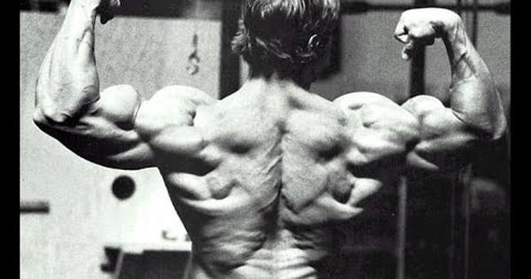 Arnold Schwarzenegger The 6 Rules To Success Arnold
