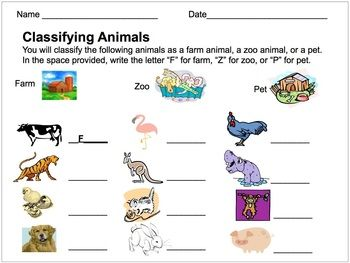 Classifying Animals Assessment Farm Zoo Or Pet Classifying Animals Farm Animals Theme Pets