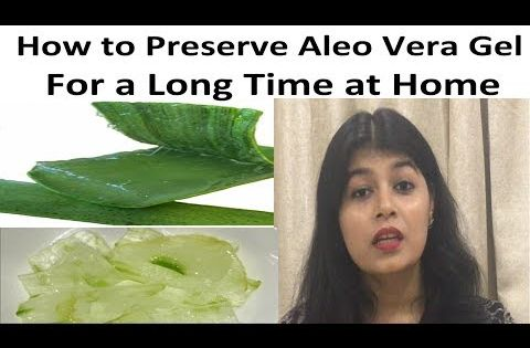 How To Store Aloe Vera Gel For Long Time Hindi How To Preserve Aloe Vera Gel At Home Youtube Fresh Aloe Vera Gel Pure Aloe Vera Gel Aloe Vera Gel