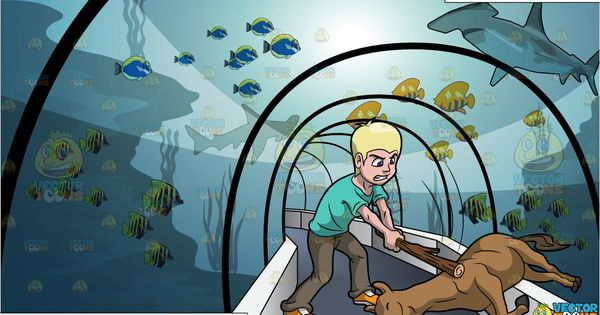 Beat A Dead Horse And Tunnel Through An Aquarium Background In 2021 Aquarium Backgrounds Horses Aquarium