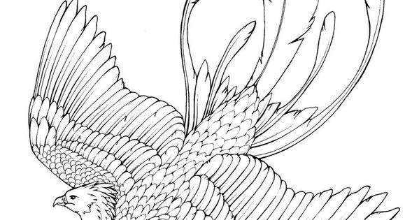 Phoenix coloring pages coloringtop