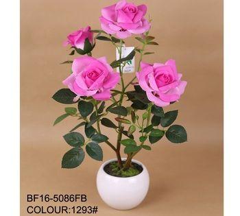 42 Gambar Mawar Resolusi Tinggi Gambar Mawar Gambar Bunga Bunga