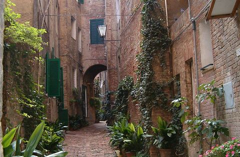 Small street in Sienna, Italy >> ONe of my favorite places in