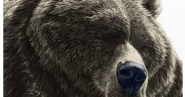 Satire Animal Illustration by Ricardo Martinez, via Behance