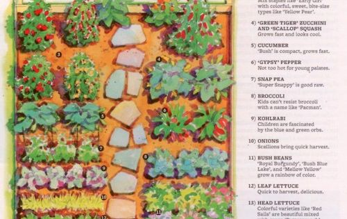 "Jamie Oliver + Better Homes & Gardens' ""Food Revolution Garden""... 12x8 garden"