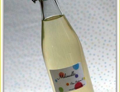 Liqueur de melon ou meloncello fait maison pinterest for Alcool de menthe fait maison