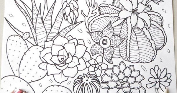 Succulent Cactus Adult Coloring Page Flowers Gardening