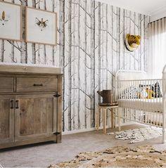 Woods Wallpaper Nursery Room Design Baby Boy Room Nursery