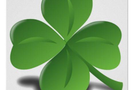 St Patrick S Day Shamrock Clover Poster Zazzle Com Clover Leaf Clover Lucky Clover