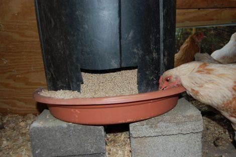 Les Mangeoires Fait Maison Mangeoire Poulailler Fait Maison Mangeoire Pour Poulet