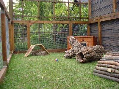 Gallery of recommended rabbit housing rabbit hutch for Homemade bunny houses