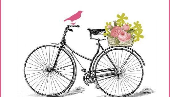 Nostalgic Vintage Bicycle With Basket Of