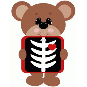 Silhouette Design Store Xray Bear Drawing For Kids Silhouette Design Design Store