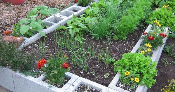 The half acre homestead for Half acre backyard landscaping ideas