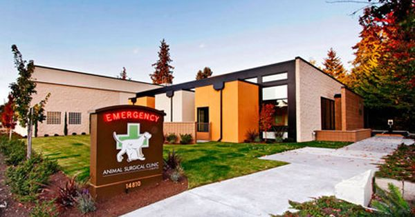 Animal Surgical Clinic Of Seattle Merit Award In The 2012