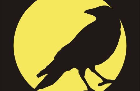 Crows stencils and pumpkin patterns on pinterest