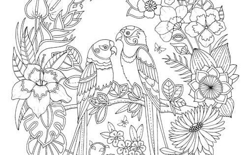 Happy Place Johanna Basford Johanna Basford Basford Coloring Book Johanna Basford Coloring Book Coloring Pages