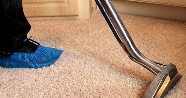 Trusted Carpet Steam Cleaners In Melbourne Bull18 Cleaners Steam Clean Carpet Cheap Carpet Cleaning Affordable Carpet