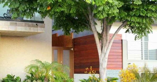 Am nagement petit jardin devant la maison quels arbres petits jardins gramin es et - Arbre ombrage petit jardin argenteuil ...