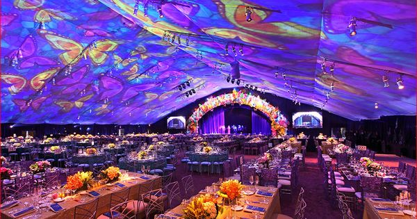 Projection Mapping On Inside Of Tent Projection Mapping