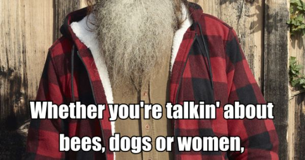 Phil- Pain comes quickly... Duck Dynasty Quotes