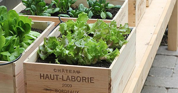 DIY: Small Space Vegetable Garden. Idea for patio herb garden...