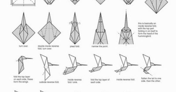 Hummingbird | Origami | Pinterest | Hummingbird, Origami ... - photo#7