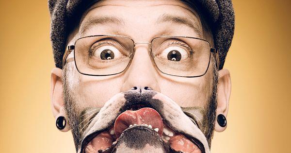 pedigree dentastix dulce el aliento de perro m225s fresco
