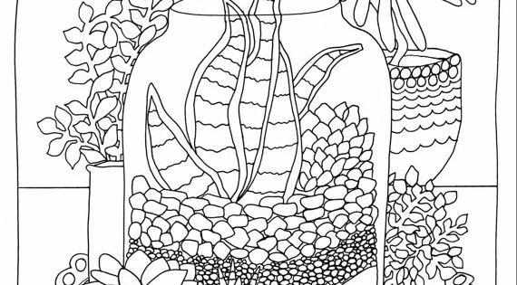 succulent terrarium coloring page