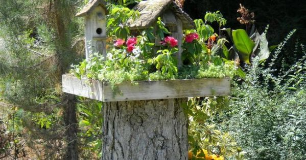 Fairy Houses Made Out of Stumps | fairy garden out of tree
