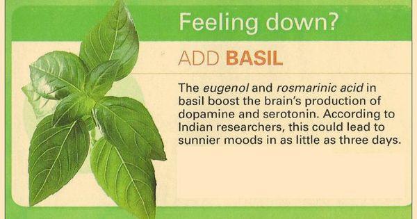 basil to naturally boost dopamine and serotonin ...