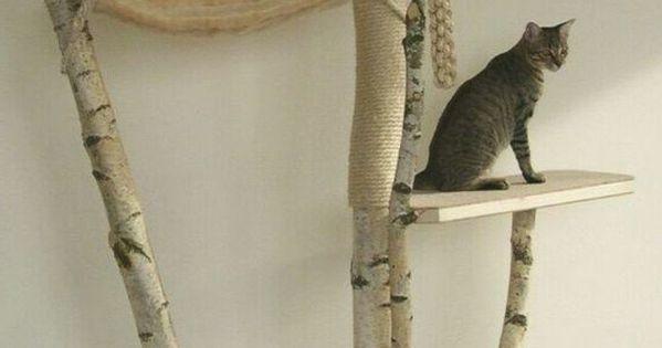 kratzbaum selber bauen aus naturmaterialien einen tollen krazbaum selber bauen katzen sachen. Black Bedroom Furniture Sets. Home Design Ideas
