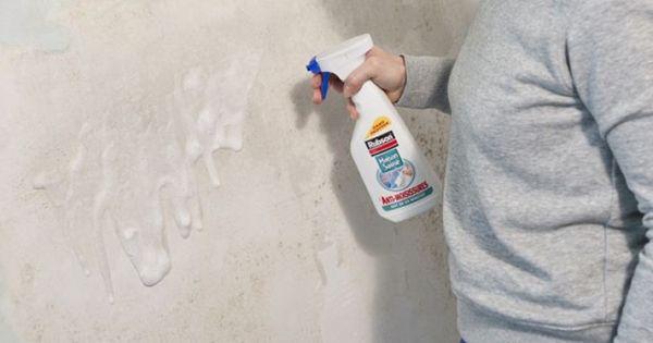 Nettoyer Et Traiter Un Mur Couvert De Salpetre Salpetre Traitement Humidite Et Nettoyage Facade