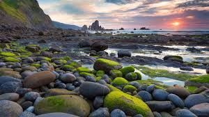 Image Result For Ultra Hd Wallpapers 8k 7680x4320 Sunset