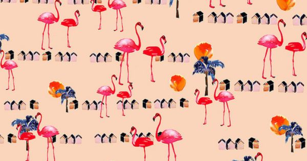 flamingo beach2 les flamants roses papier peint et flamants roses. Black Bedroom Furniture Sets. Home Design Ideas