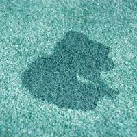 How To Remove Old Urine Stains From A Carpet Urine Stains Cleaning Hacks Pet Urine