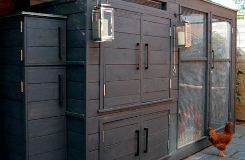 Raise your own chickens! I like the idea of a chicken coop,