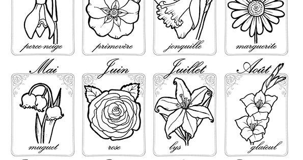Calendrier des fleurs herbier fleur pinterest - Calendrier des fleurs coupees ...
