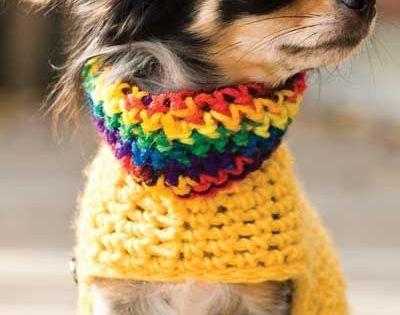Crochet Dog Bandana Pattern Ideas Video Tutorial Best ...