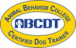Become An Abc Certified Dog Trainer Medical School Animal