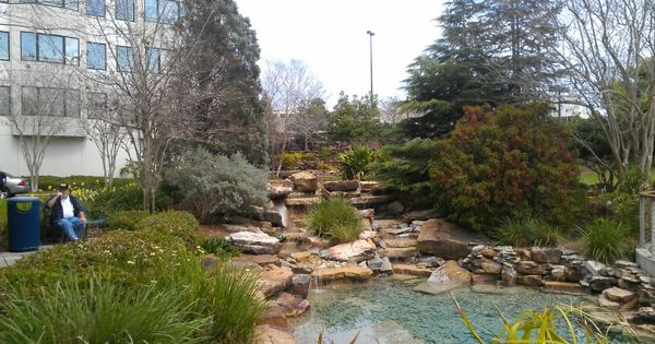 Mrmc waterfall garden places ocala florida for Landscaping rocks ocala florida